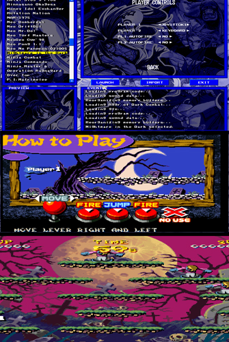 NeoGeo গেম PC এর জন্য ( Nightmare in the dark )